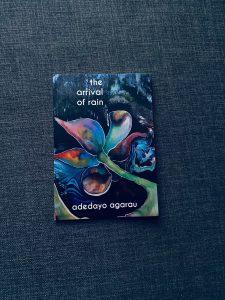 'The Arrival of Rain' by Adedayo Adeyemi Agarau
